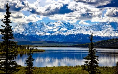 Alaska begeleide cruisetour mei en augustus 2019