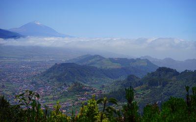 Canarische eilanden en Madeira