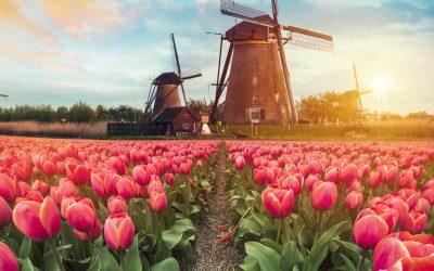 Riviercruise Nederland & België – 13 augustus 2020